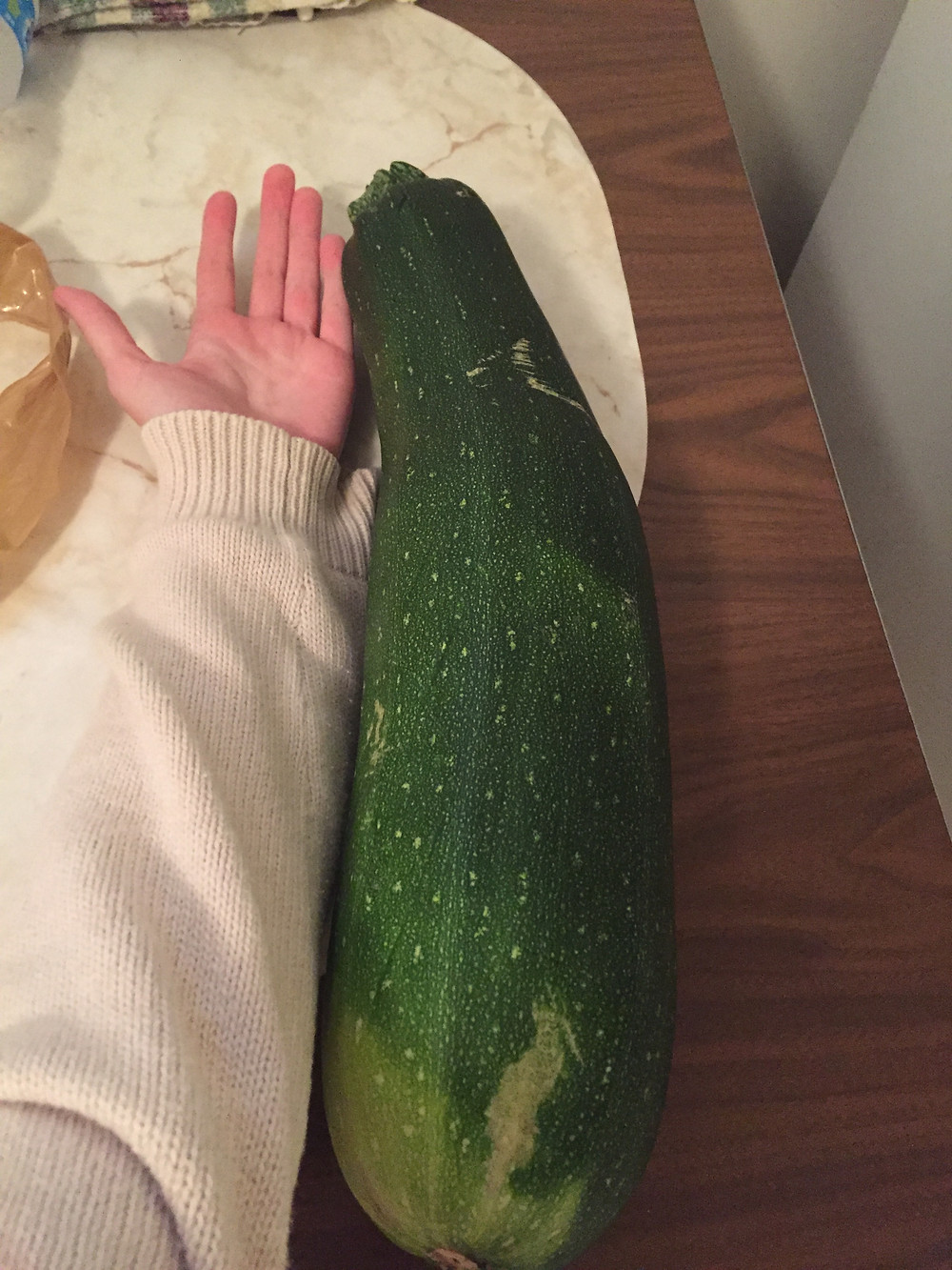 A comparison photo of my arm with my baka's zucchini.