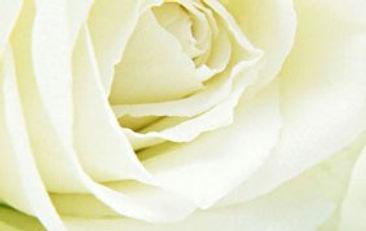 d5a0564b1d-mariage1.jpg
