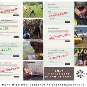 Sassafras Summer Camp has a few spots left!