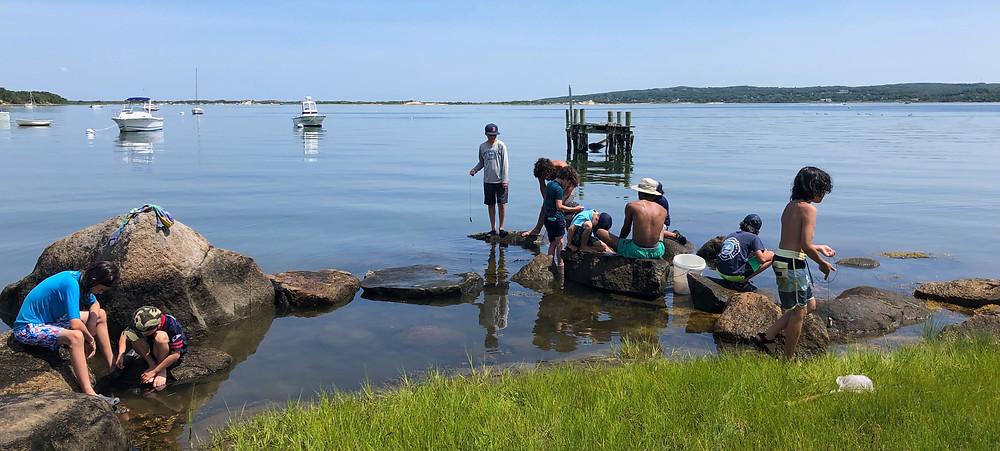 """Summer Camp 2019 Crabbing during """"Water"""" Week"""