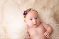 Baby Photography Brighton Michigan-2473