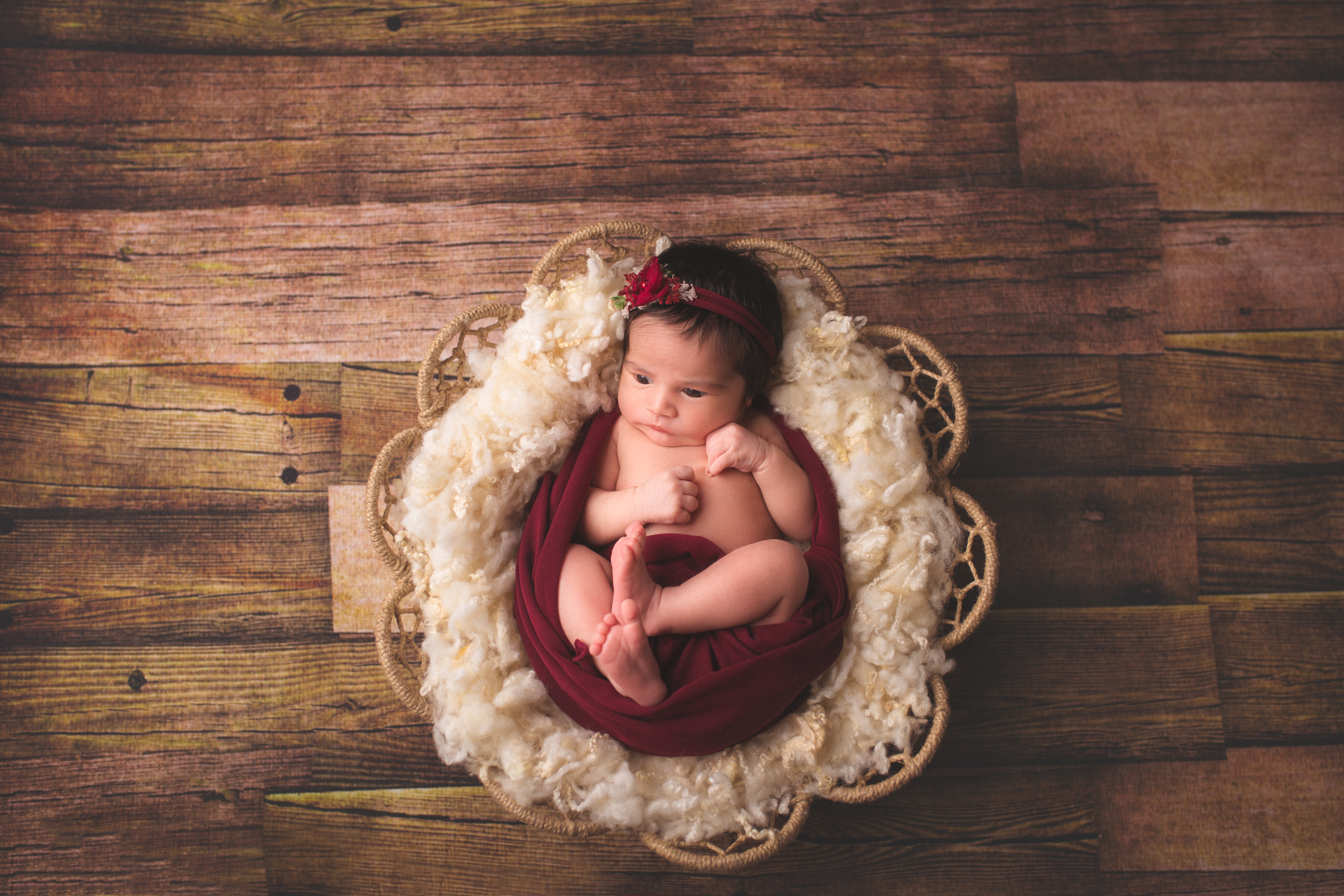West Bloomfield Michigan Newborn Photography--6