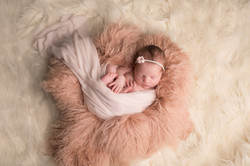 Fenton Michigan Newborn Photographer--2