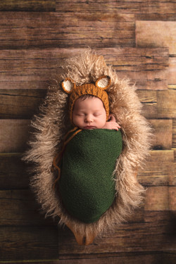 Award Winning Michigan Newborn Photographer--2