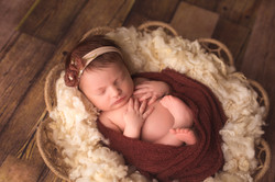 Bloomfield Hills Michigan Newborn Photography--2