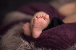 Ann Arbor Michigan Newborn Photography--