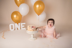 Canton Michigan One year birthday photography session--26