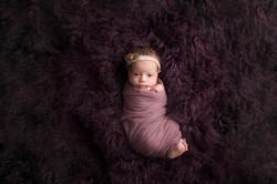 Belleville Michigan Newborn Photography--4