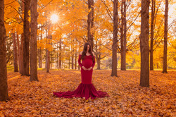 Ann Arbor Michigan Pregnancy Photography-3365