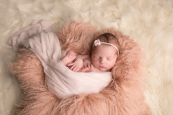 Fenton Michigan Newborn Photographer-