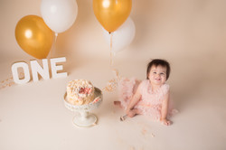 Canton Michigan One year birthday photography session--22