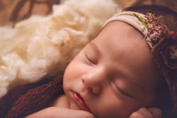 Bloomfield Hills Michigan Newborn Photographer--3