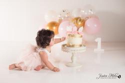 Ann Arbor Michigan One Year Baby Cake Smash Boho Lifestyle Photography Studio--16