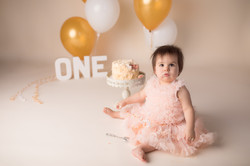 Canton Michigan One year birthday photography session--18