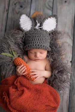 Canton Michigan Newborn Photographer--5