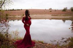 Ann Arbor Michigan Pregnancy Photography-3067