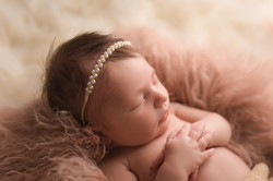Ann Arbor Michigan Newborn Photographer--6