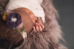 Grand Blanc Michigan Newborn Photography-100
