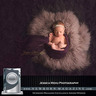Award winning Michigan Newborn Photographer