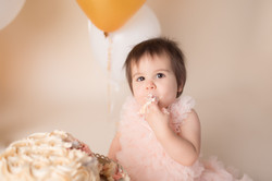Canton Michigan One year birthday photography session--9