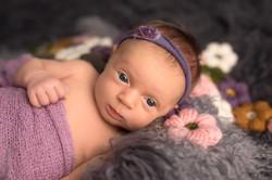 Ann Arbor Michigan Newborn Photography--