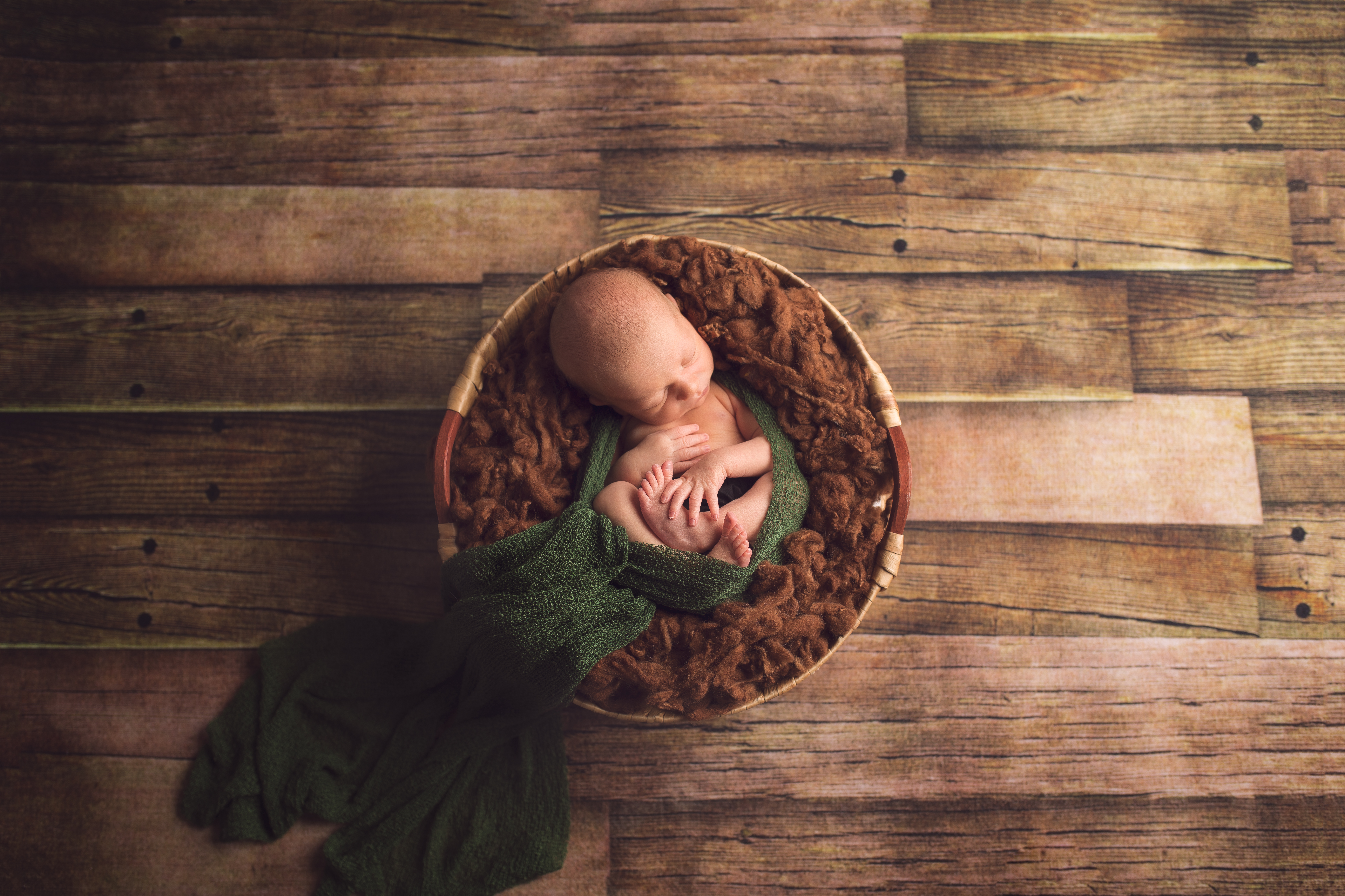 Grand Blanc Michigan Newborn Photographer-