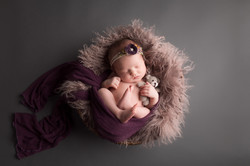 Dexter Michigan newborn Photography--2