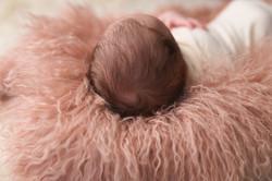 Bloomfield Hills Michigan Newborn Photography--7