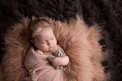 Plymouth Michigan Newborn Photographer-