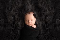 Michigan Award Winning Newborn Photographer--10