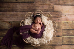 Northville Michigan Newborn Photographer-
