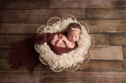 Belleville Michigan Newborn Photography--7