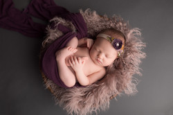 Dexter Michigan newborn Photography-