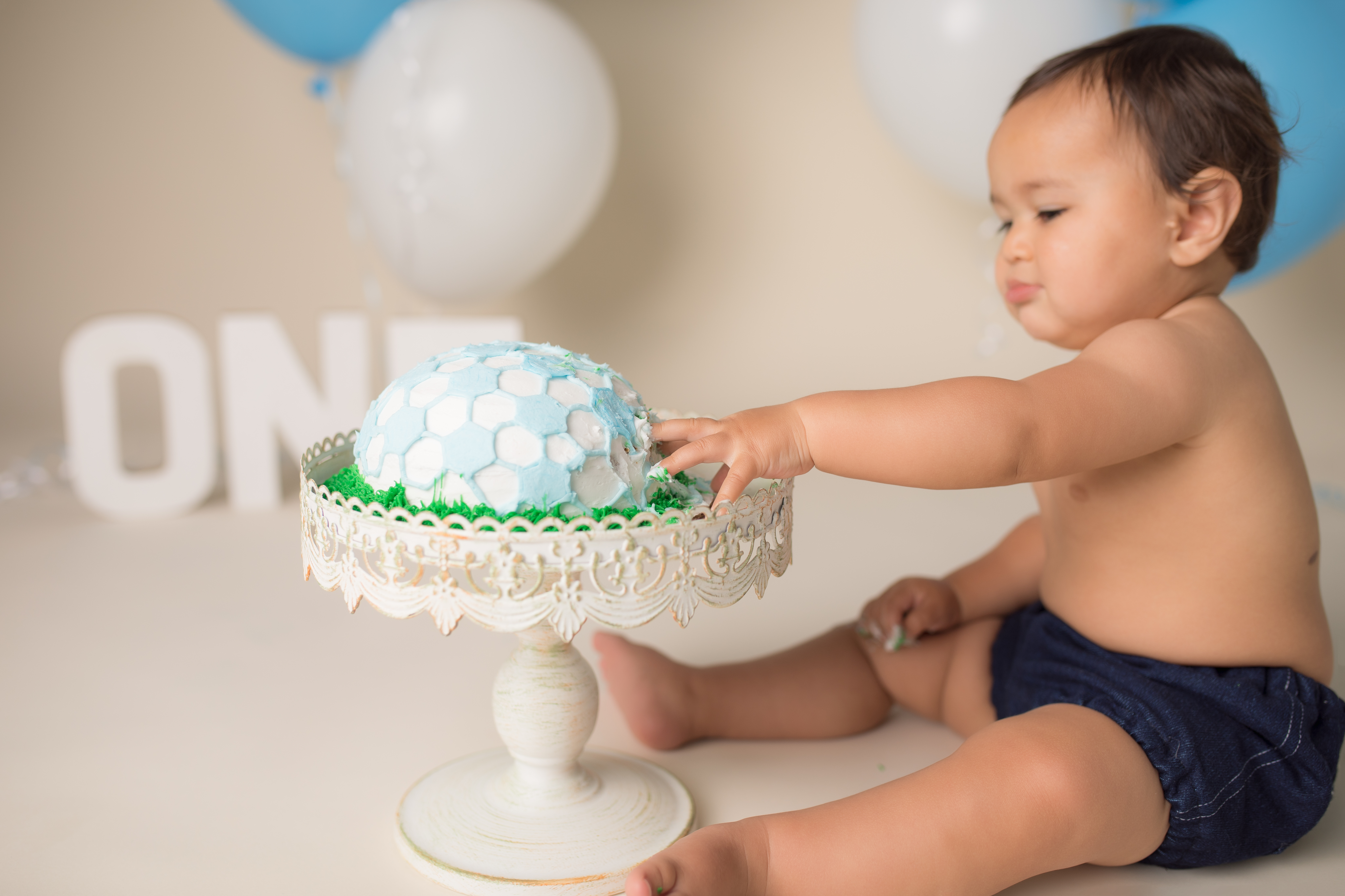 Novi Michigan cake smash one year photography session--2