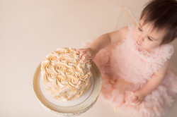 Canton Michigan One year birthday photography session--5