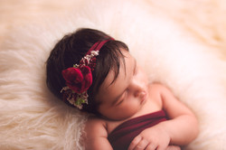 Hartland Michigan Baby Photographer--3