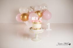 Ann Arbor Michigan One Year Baby Cake Smash Boho Lifestyle Photography Studio--12