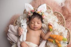 Canton Michigan Newborn Baby Professional Photography Services--15