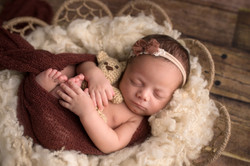 Belleville Michigan Newborn Photography--9