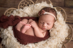 Belleville Michigan Newborn Photography--8