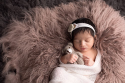 Northville Michigan Newborn Photographer--5