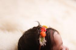 Ann Arbor Newborn Photography--7