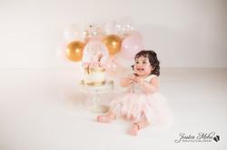 Ann Arbor Michigan One Year Baby Cake Smash Boho Lifestyle Photography Studio--23
