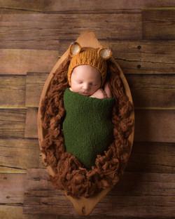 South Lyon Michigan Newborn Photography--12