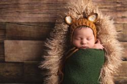 Award Winning Michigan Newborn Photographer--3