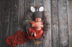 Canton Michigan Newborn Photographer--4