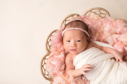 Plymouth Michigan newborn Photography--3