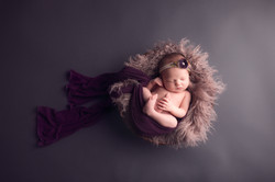 Plymouth Michigan newborn Photography--4 copy