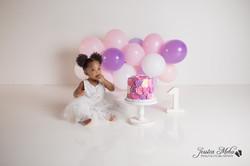 Novi Michigan One Year Baby Cake Smash Boho Lifestyle Photography Studio--15