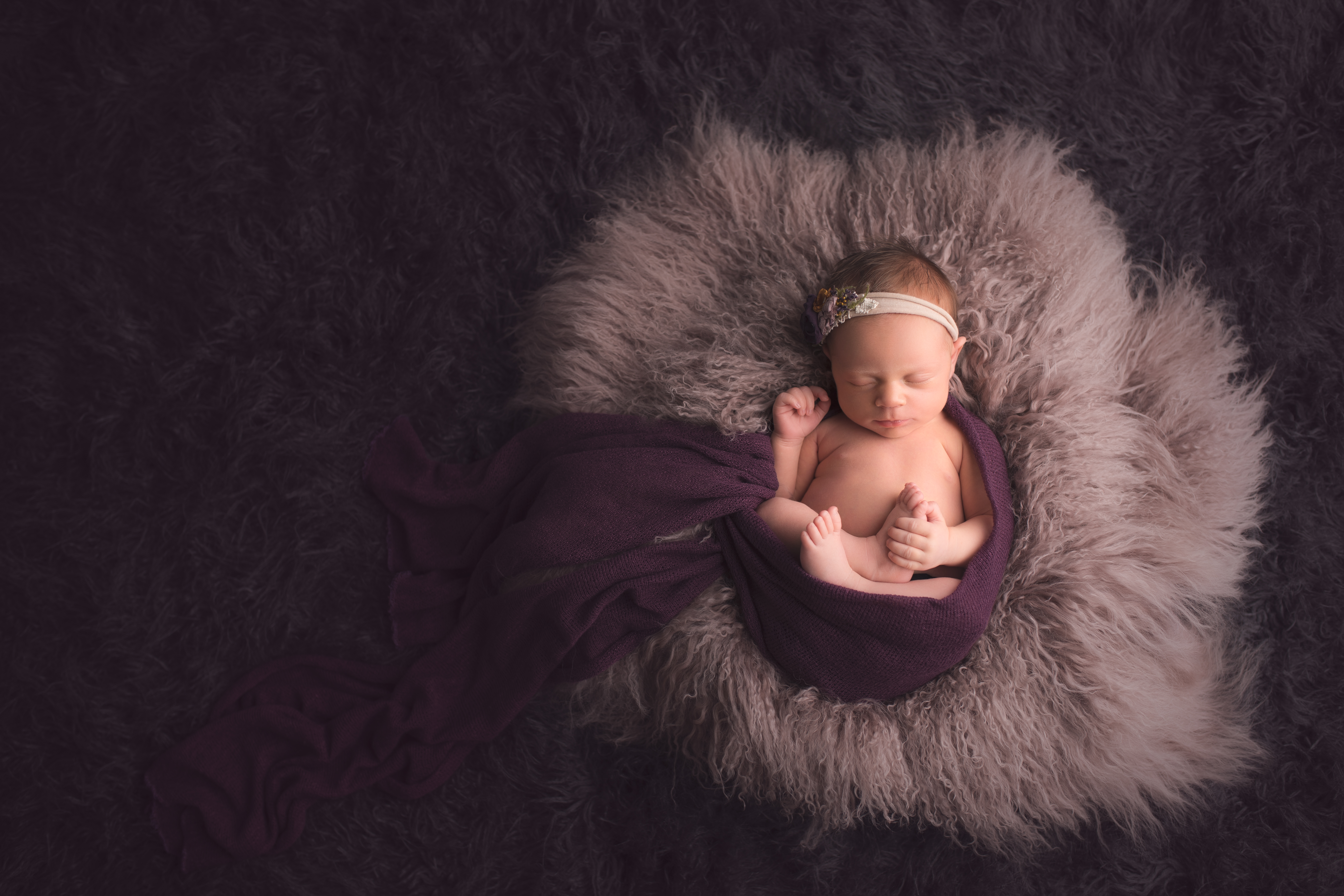 Plymouth Michigan Newborn Photography-10